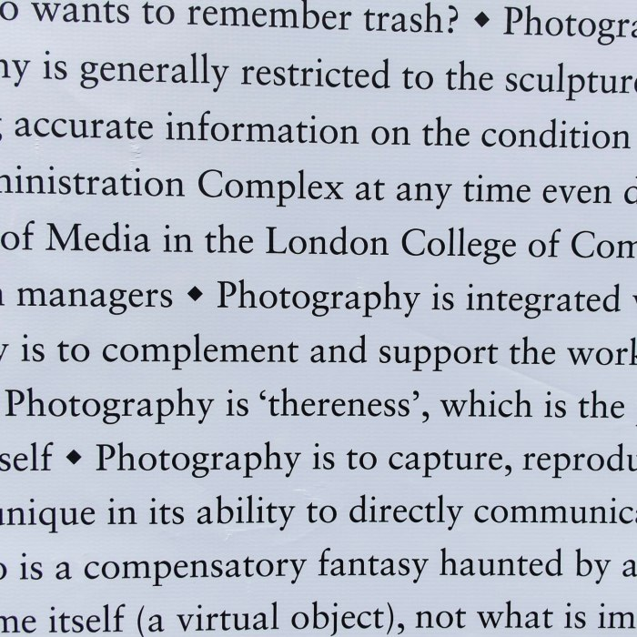photography is 'thereness'
