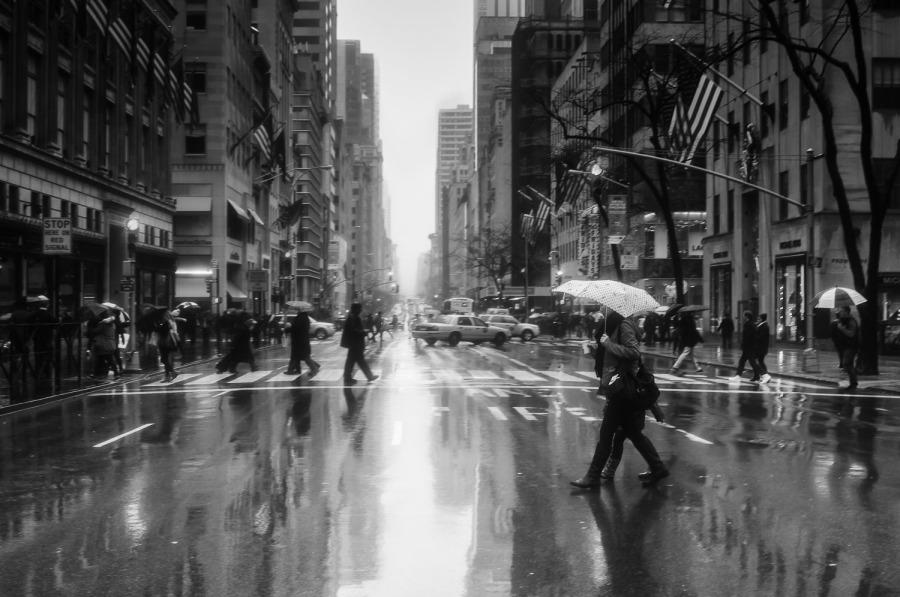 raining on Fifth Avenue