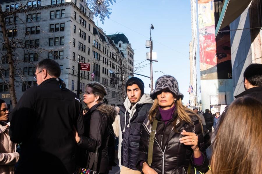 Fashionable Fifth Avenue 10.jpg