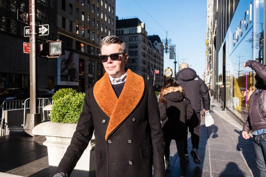 Fashionable Fifth Avenue 7